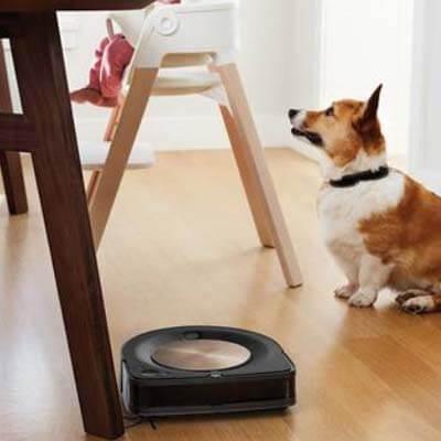 Roomba S9 mascotas