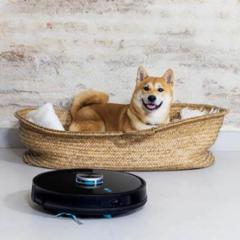 Apta para hogares con mascotas